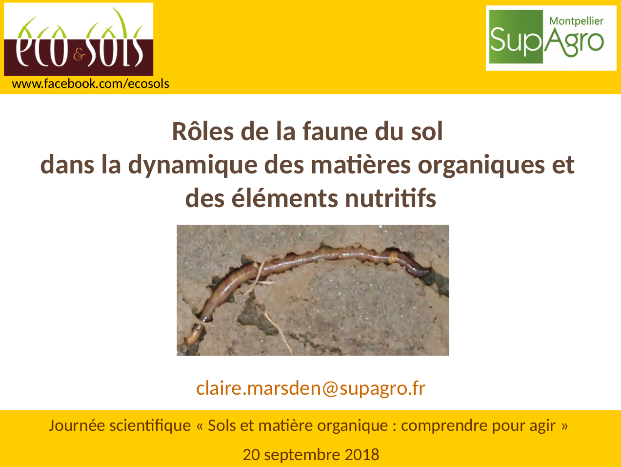 image diapo3.png (0.4MB) Lien vers: https://journees-scientifiques.fr/?201809SMO/download&file=201809JSSOL_Marsden.pdf